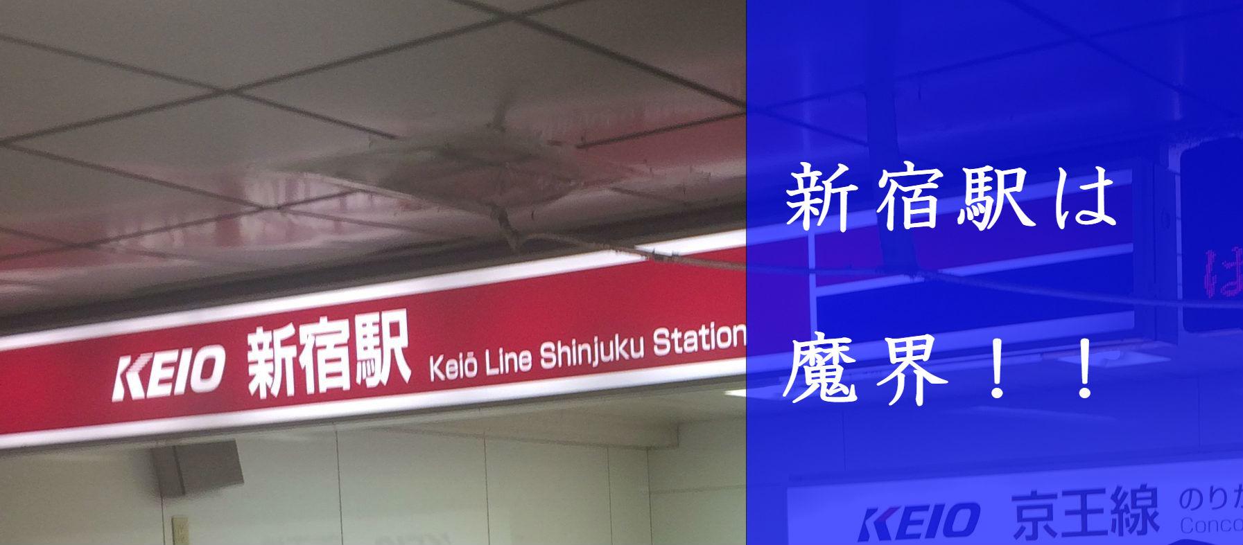 新宿駅という名の魔界にベビーカーで突入してきた!